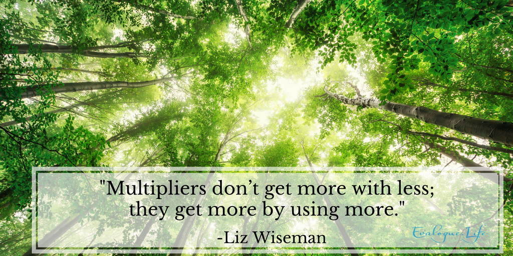 """Multipliers don't get more with less; they get more by using more."" Liz Wiseman, Multipliers book."