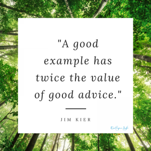 A good example has twice the value of good advice - Jim Kier