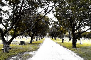 There are no coincidences on the road to our purpose. Photo of an old road through a cemetery.