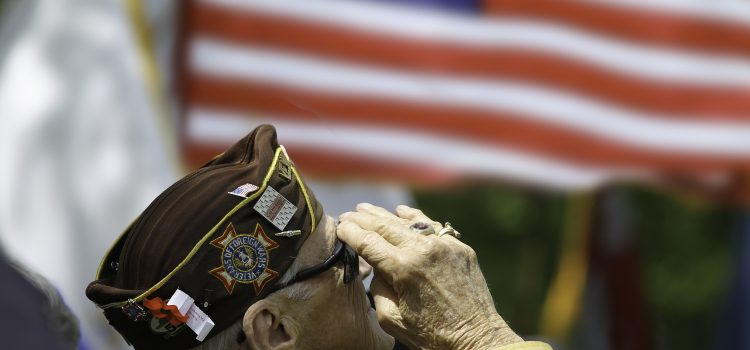 Veterans Day event - an elderly veteran salutes the flag at an event
